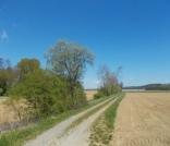 Etappe5(8 Tag)Strecke-Neudau–Fürstenfeld-10